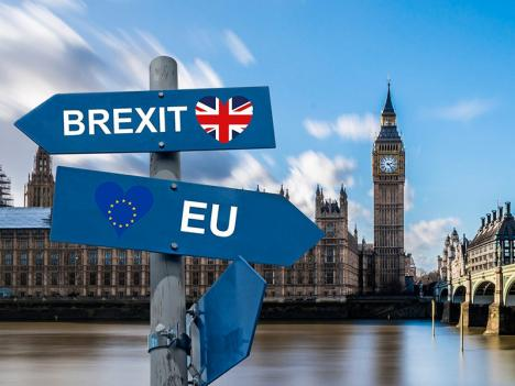 Un controversé projet de musée du Brexit lance un appel aux dons