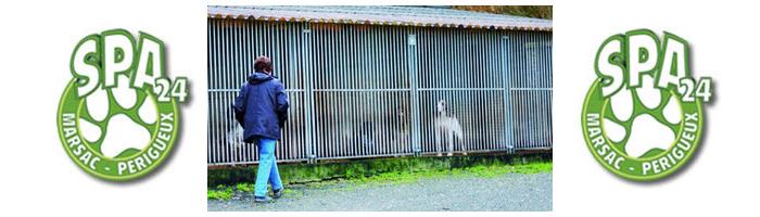 le journal de la protection animale