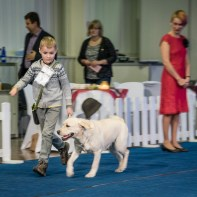 Child and dog competition