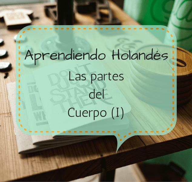 APRENDIENDO HOLANDÉS: LAS PARTES DEL CUERPO (I)