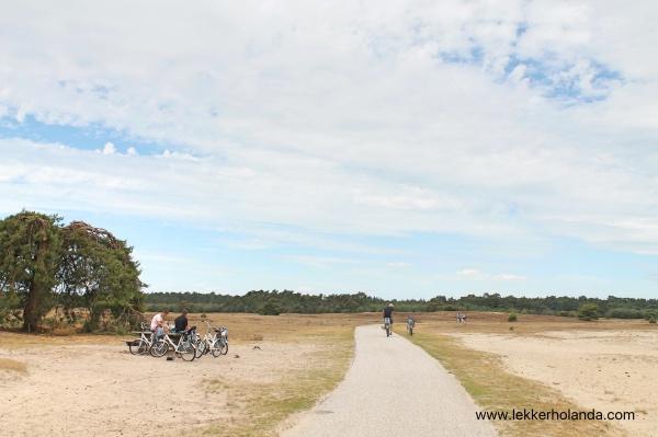 Parque Nacional holandés De Hoge Veluwe