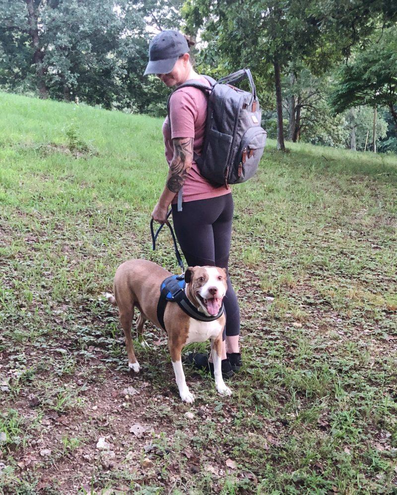pack a dog travel bag