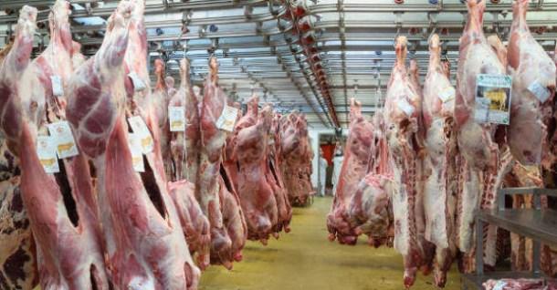 Carcasses de veau dans le pavillon des viandes de boucherie du marché international de Rungis (Val-de-Marne, France)