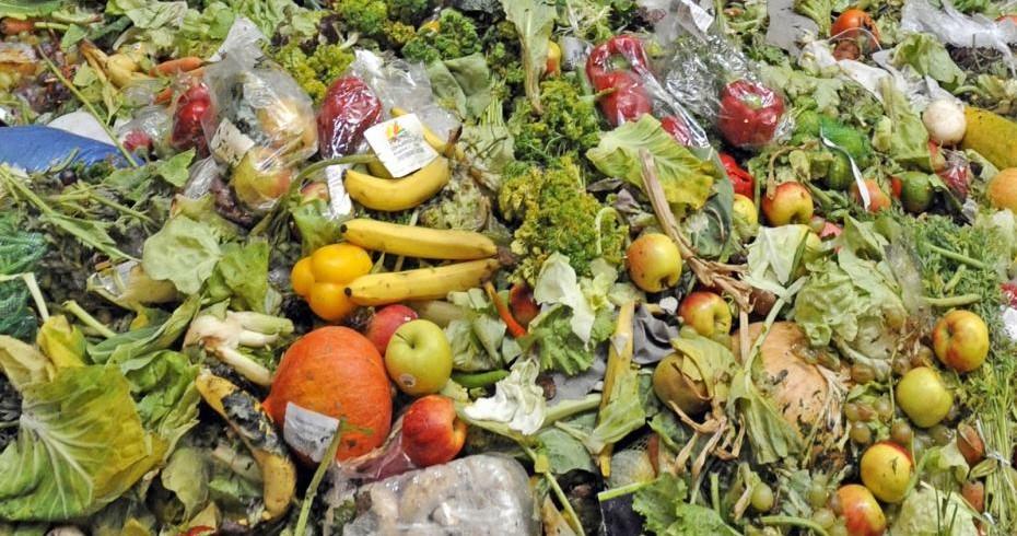 Gaspillage alimentaire : 7 millions de tonnes de nourriture gâchée chaque année