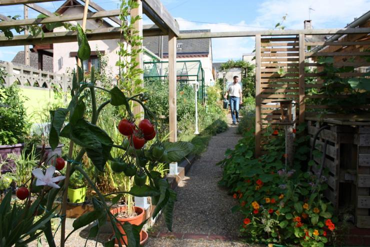 L'extraordinaire productivité d'un petit potager de 50 m2 : un exemple pour nourrir la ville de demain ?