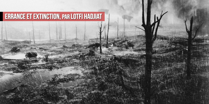 Errance et extinction, par Lotfi Hadjiat