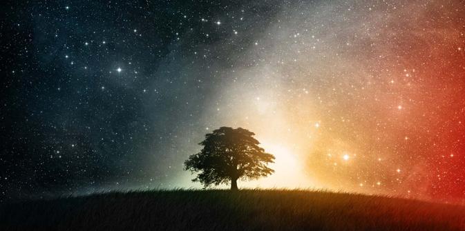 http://i2.wp.com/www.lelibrepenseur.org/wp-content/uploads/2017/11/cosmos-nature_lenoble.jpg?w=673