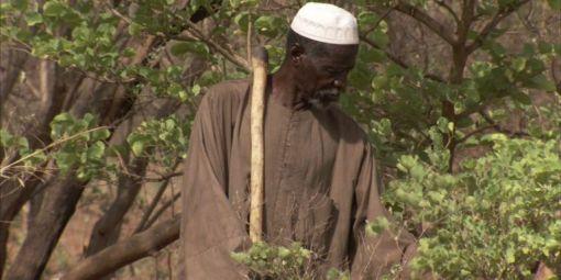 Prix Nobel Alternatif 2018 : le triomphe de Yacouba Sawadogo, paysan du Burkina