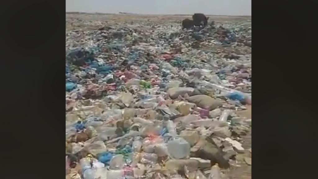 Décharges sauvages en Algérie : le Sahara en péril