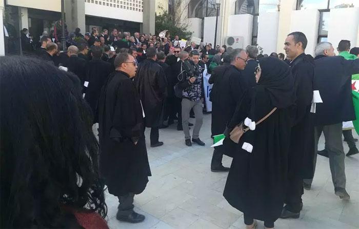 Algérie – Bouira : quand les magistrats rejoignent le peuple. Ils exigent le départ du système