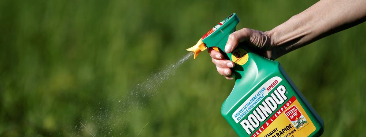 Procès Roundup : Monsanto condamné à payer près de 81 millions de dollars