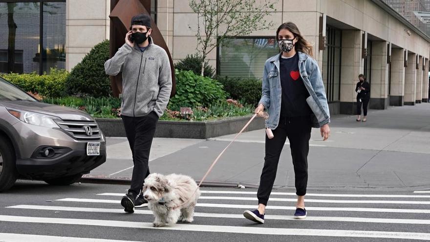 Coronafolies : promener son chien augmenterait de 78% le risque d'être infecté