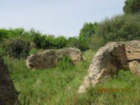 Villa di Procoio: resti