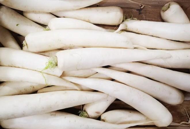 navet long blanc