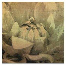 Tissage Jacquard, coton, lin, teinture, 1,700 $