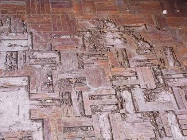lantai-kayu-yang-rusak