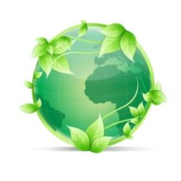 logo-bumi-lestari-green