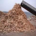 sampah-kayu