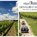 Caprai Winery 1