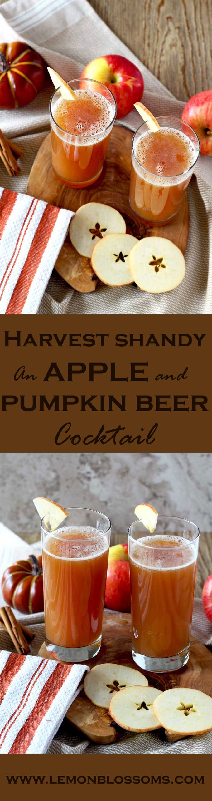 Harvest Shandy, spiced apple cider and pumpkin beer are the perfect combination for this easy 2 ingredients cocktail