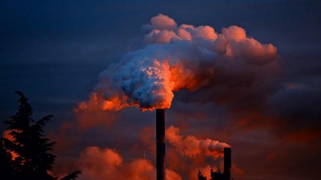 carbone-jpg