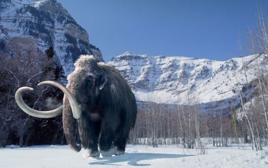 Woolly-Mammoth-5