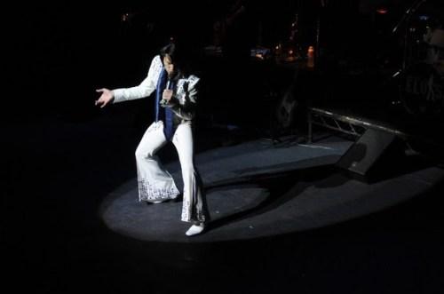 One Night Elvis