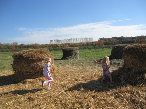 Fall Haystacks