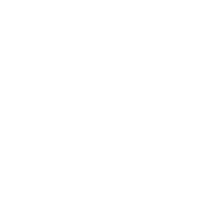 Website Hosted by Flywheel