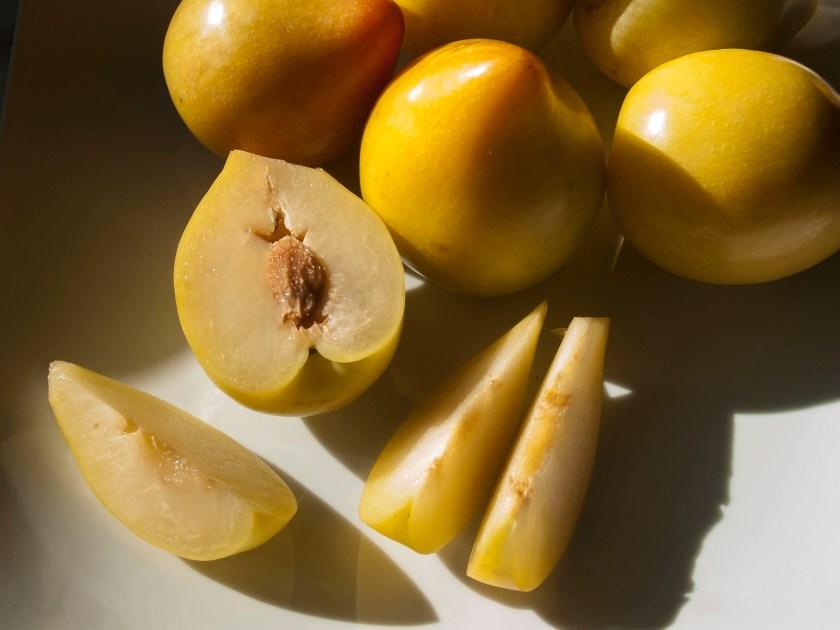 Lemon Plums in season in winter.