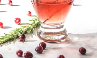 Spiced Cranberry Vodka Cocktail reicpe