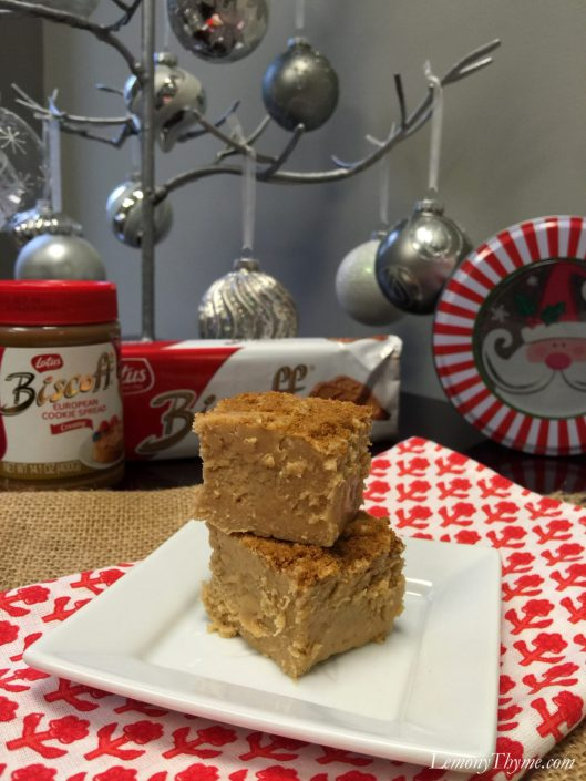 European Cookie Butter Fudge3