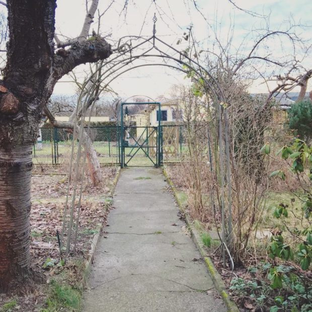 Dormant winter garden. Thanks @ivenka for the visit and picture!
