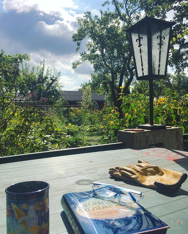 Coffee, reading and garden work