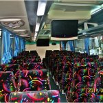 Bus Pariwisata Jakarta - Agra Mas - Interior