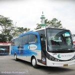 Bus Pariwisata Pakar Utama