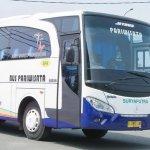 Bus Pariwisata - Surya Putra