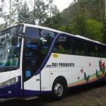 Bus Surya Putra