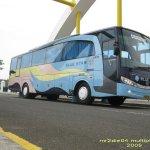 Bus Pariwisata Bluestar