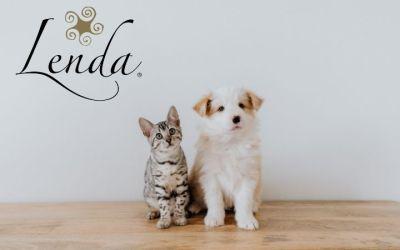📻Problemas gastrointestinales en mascotas – Lenda en Radio Voz