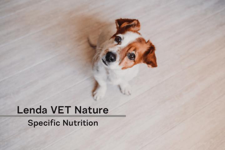 Los núcleos de Lenda VET Nature - Lenda en Radio Voz