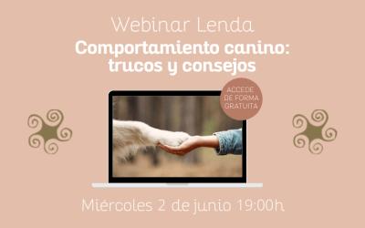 Comportamiento canino: ¡próximo Webinar gratuito!