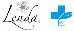 logo-300x125-1