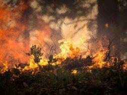 aprosoja-mt-lista-dicas-para-evitar-incendios-em-areas-rurais-60abf12935091