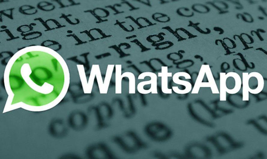 Términos, condiciones y política de privacidad de WhatsApp (I)