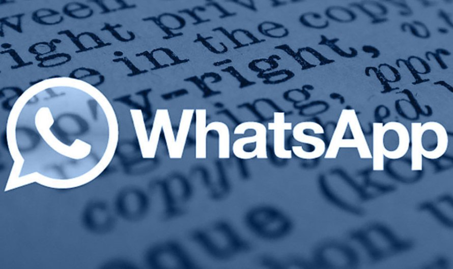 Términos, condiciones y política de privacidad de WhatsApp (II)