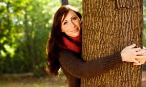 Zo stromov môžeme čerpať energiu