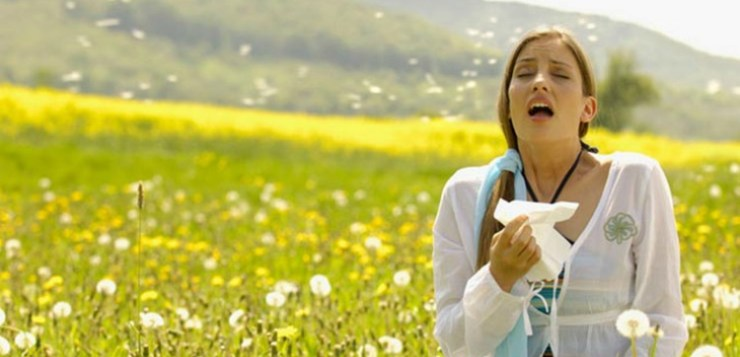 Antistaminici Naturali: i rimedi per una primavera più serena