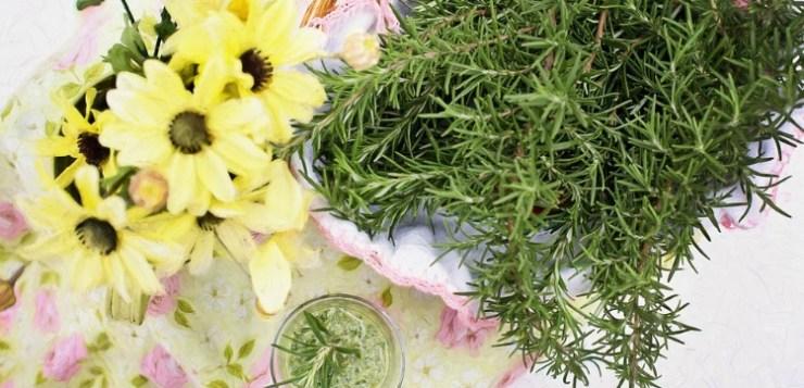 Immancabili erbe aromatiche: come coltivarle in casa