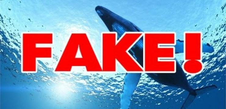 Blue Whale game, Video Falsi de Le Iene